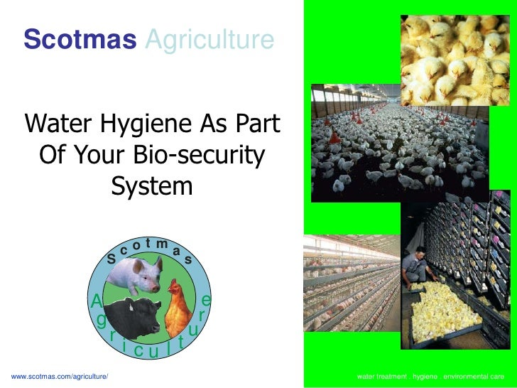 Scotmas Agriculture   Water Hygiene As Part    Of Your Bio-security          System                                   cot ...