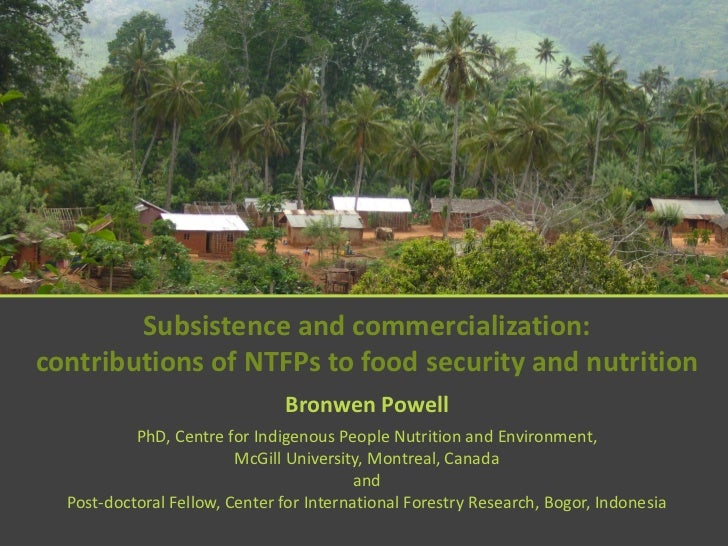 Subsistence and commercialisation: contributions of NTFPs to food security and nutrition