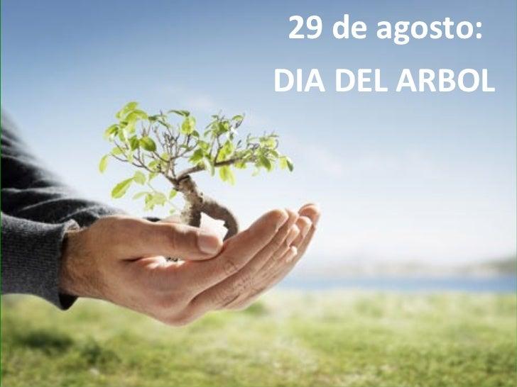 29 de agosto:DIA DEL ARBOL