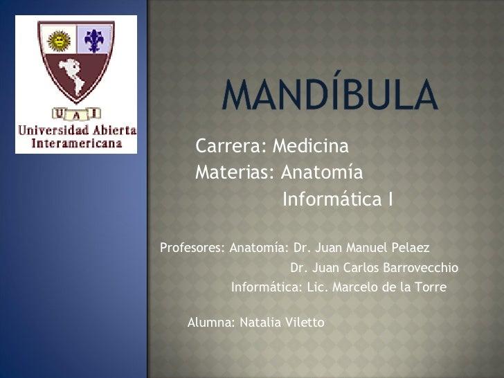 Profesores: Anatomía: Dr. Juan Manuel Pelaez Dr. Juan Carlos Barrovecchio Informática: Lic. Marcelo de la Torre Carrera: M...