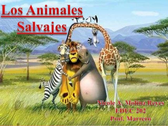  Los estudiantes podrán conocer cuáles son los animales salvajes.  Los estudiantes podrán identificar en imágenes los an...