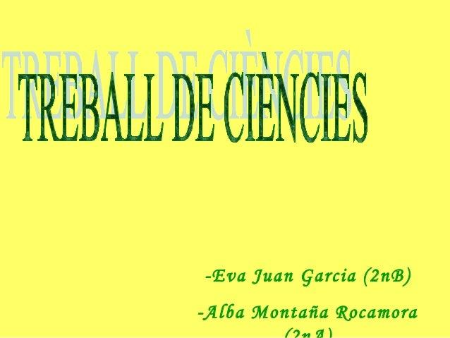 -Eva Juan Garcia (2nB) -Alba Montaña Rocamora