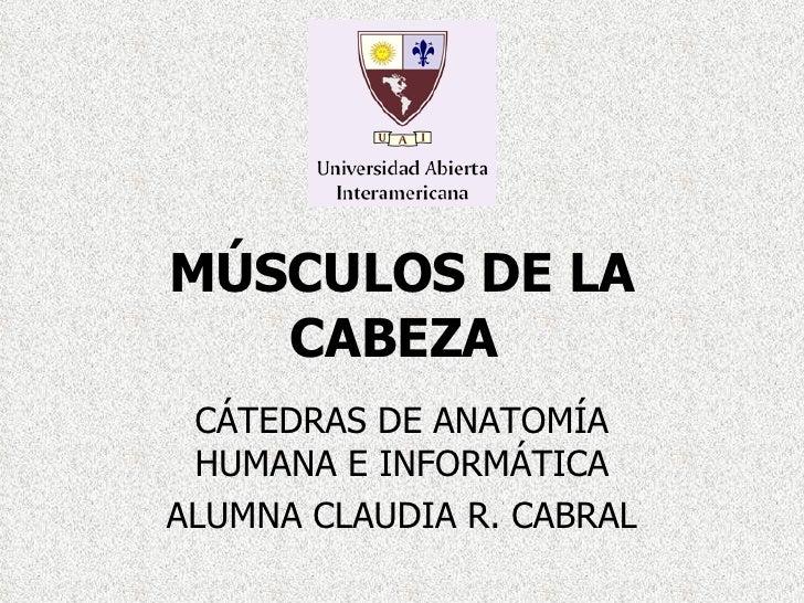 MÚSCULOS DE LA CABEZA   CÁTEDRAS DE ANATOMÍA HUMANA E INFORMÁTICA ALUMNA CLAUDIA R. CABRAL