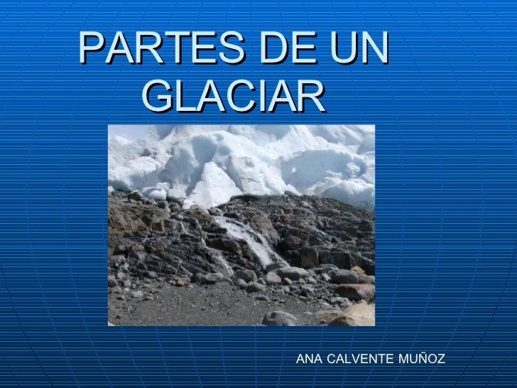 PARTES DE UN GLACIAR ANA CALVENTE MUÑOZ