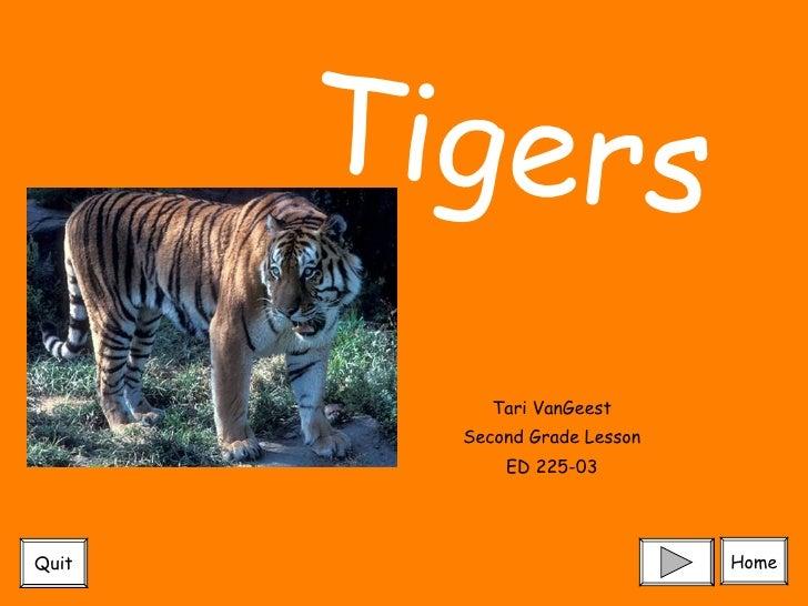 Tari VanGeest Second Grade Lesson ED 225-03 Tigers Home Quit