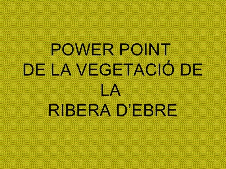POWER POINT  DE LA VEGETACIÓ DE LA  RIBERA D'EBRE