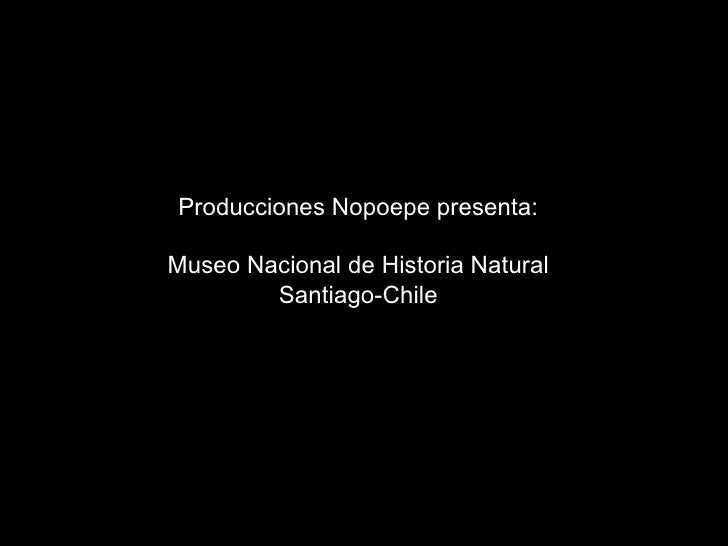 Producciones Nopoepe presenta:  Museo Nacional de Historia Natural         Santiago-Chile
