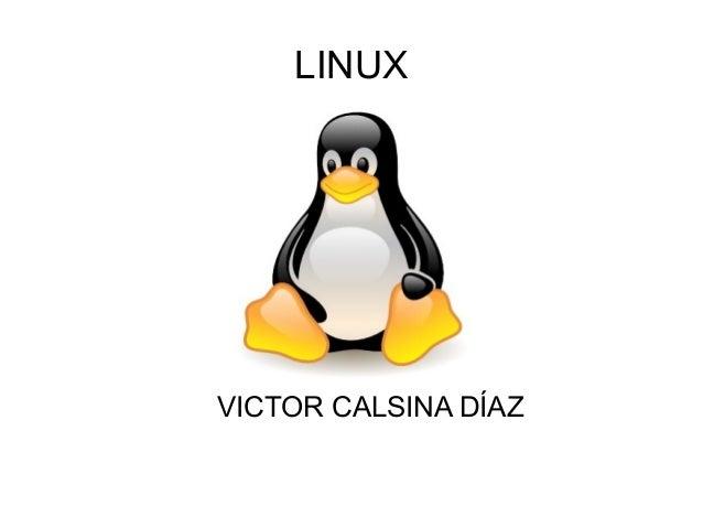 LINUX VICTOR CALSINA DÍAZ