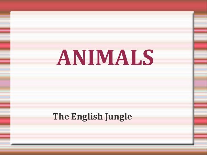Animals - The English Jungle