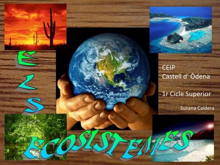 Power Ecosistemes