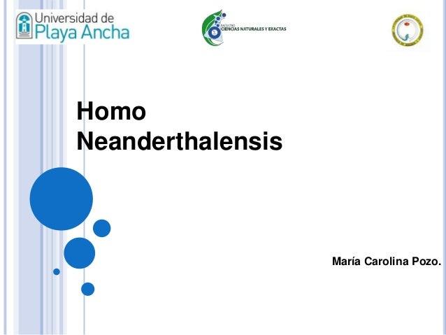 María Carolina Pozo. Homo Neanderthalensis