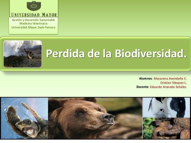 Perdida de la Biodiversidad. Alumnos: Macarena Avendaño C. Cristian Vásquez L. Docente: Eduardo Araneda Schüler. Gestión y...