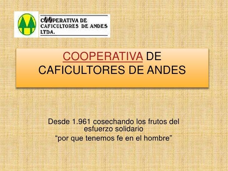 """COOPERATIVA DE CAFICULTORES DE ANDES<br />Desde 1.961 cosechando los frutos del esfuerzo solidario<br />""""por que tenemos f..."""