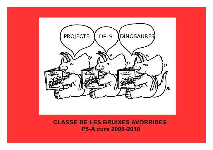 CLASSE DE LES BRUIXES AVORRIDES  P5-A curs 2009-2010