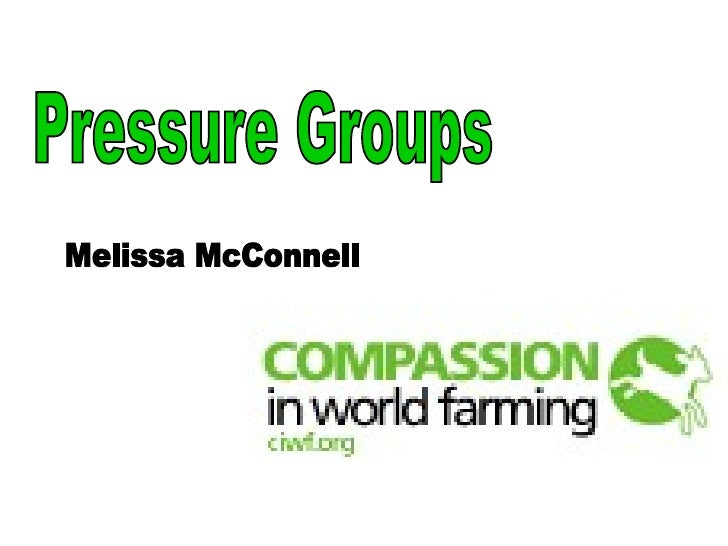 Pressure Groups Melissa McConnell