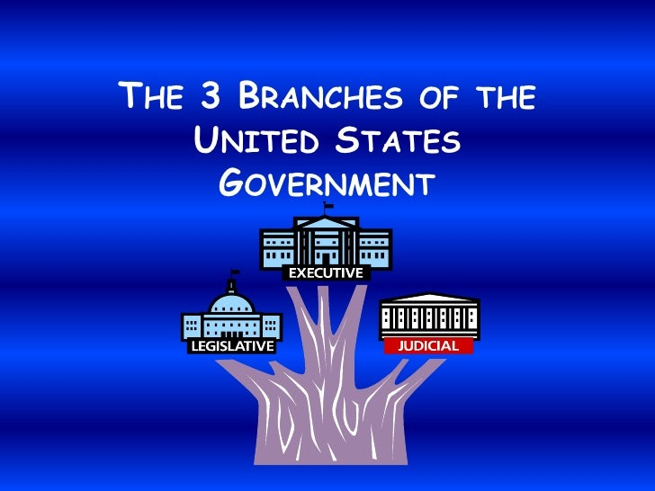 THE 3 BRANCHES OF THE     UNITED STATES      GOVERNMENT