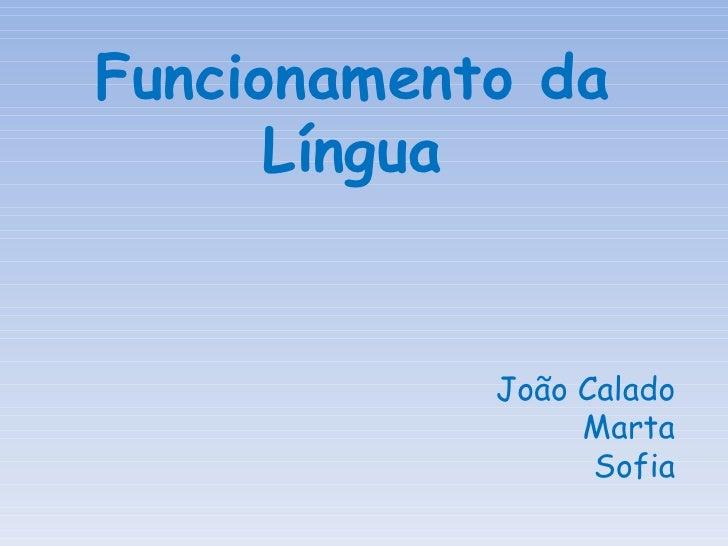 Funcionamento da Língua João Calado Marta Sofia