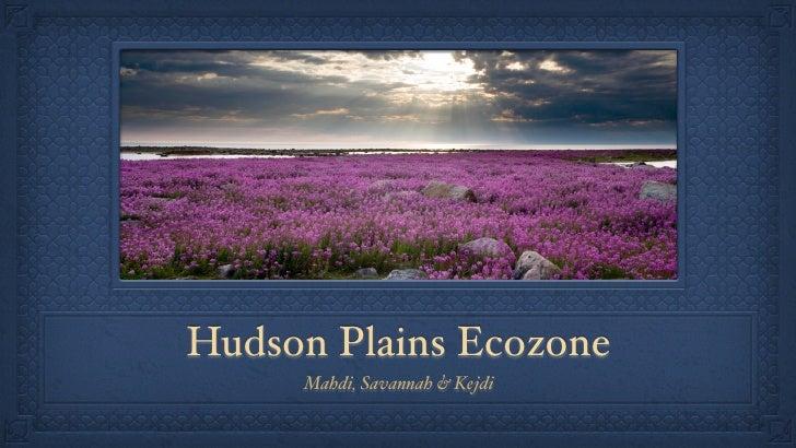 Hudson Plains Ecozone     Mahdi, Savannah & Kejdi