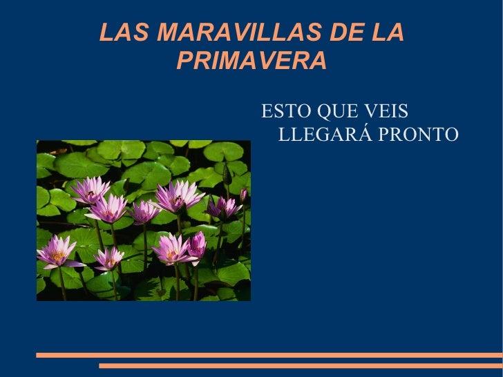 LAS MARAVILLAS DE LA PRIMAVERA <ul><li>ESTO QUE VEIS LLEGARÁ PRONTO </li></ul>