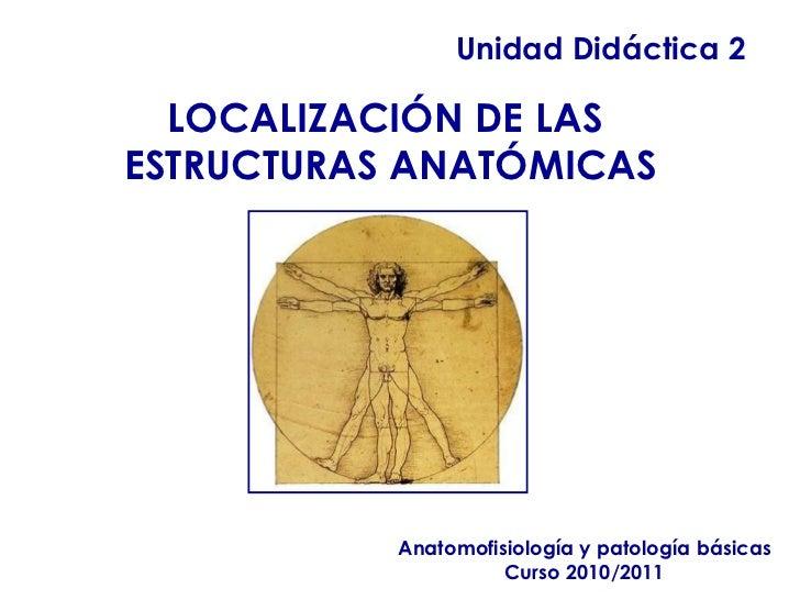 Unidad Didáctica 2 Anatomofisiología y patología básicas Curso 2010/2011 LOCALIZACIÓN DE LAS  ESTRUCTURAS ANATÓMICAS