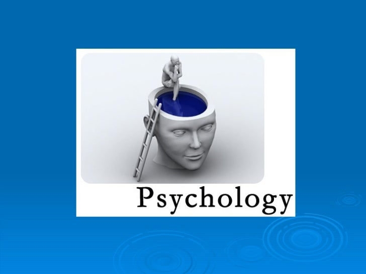 Experiment PSY General Knowledge