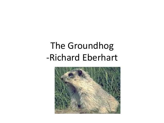 the groundhog richard eberhart essay
