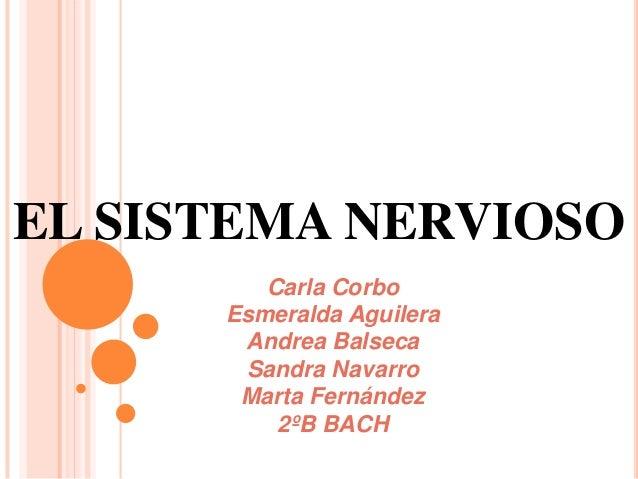 El sistema nervioso (Psicología - 2013-14) IES LA CABRERA
