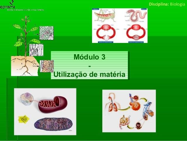Módulo 3 - Biologia - Utilização de matéria