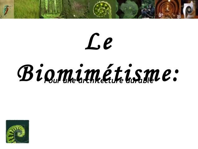 Le Biomimétisme: Pour une architecture durable