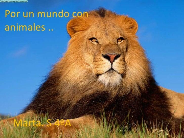 Por un mundo con animales .. <br />Marta. S 4ºA<br />