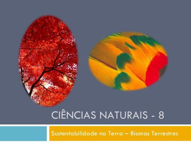 Powerpoint Nr. 2   Biomas