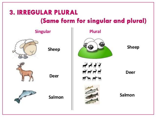 Free Worksheets irregular plural nouns worksheets : NB1 - Singular and plural