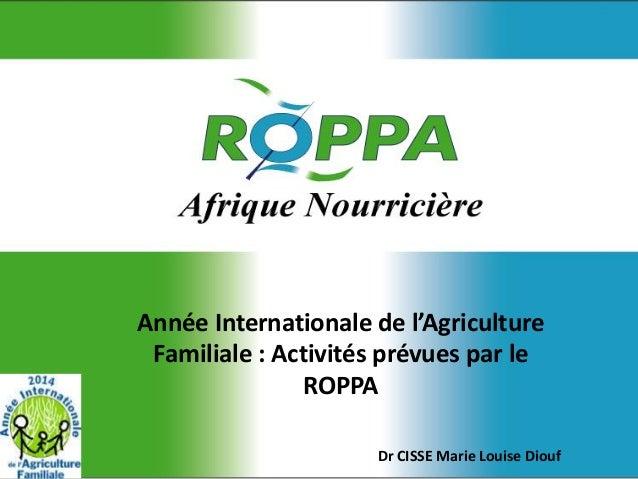 Année Internationale de l'Agriculture Familiale : Activités prévues par le ROPPA Dr CISSE Marie Louise Diouf