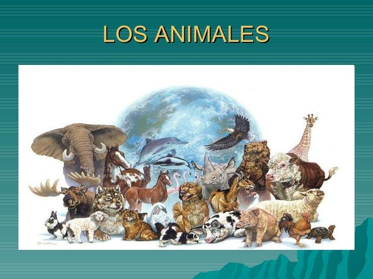 Powerpoint Animales Jose Antonio Guillen Y Pablo Miguelez 3ºE