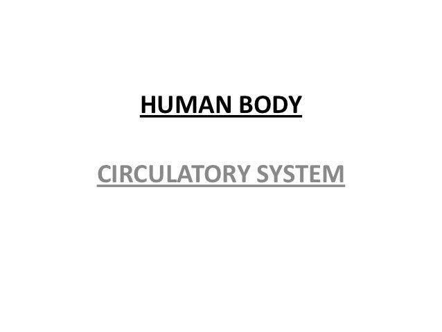 HUMAN BODYCIRCULATORY SYSTEM