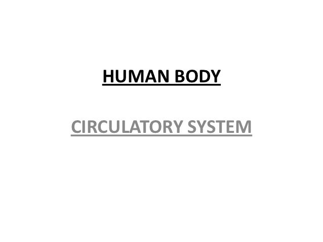 Powerpoint circulatory system   core