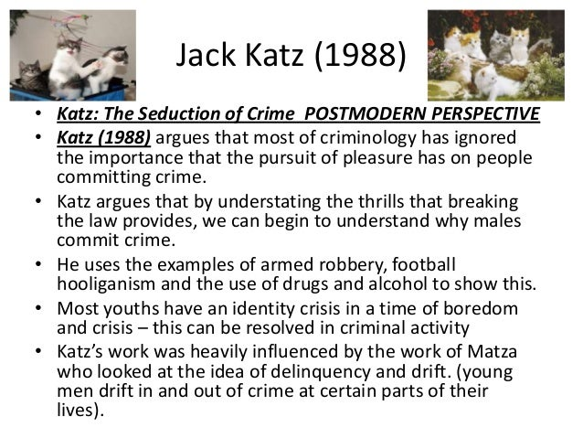 couses and effects of crime Social scientists have been studying and debating the effects of such a habit increases the likelihood that a person will commit a violent crime.
