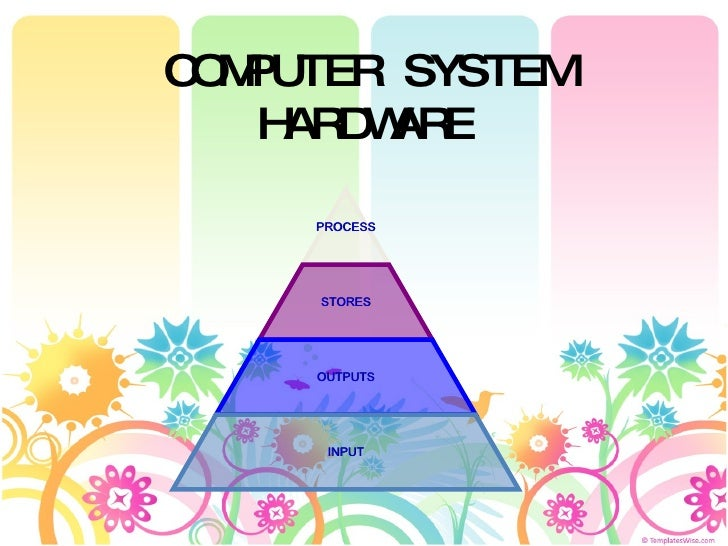 COMPUTER SYSTEM HARDWARE PROCESS STORES OUTPUTS INPUT
