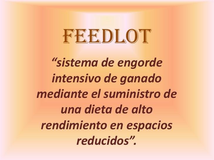 Feetlot