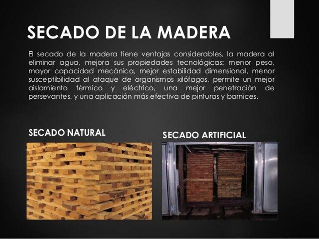Tecnologia de materiales semana 13 madera - Tipos de barnices para madera ...