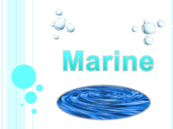 Marine Information Power Point