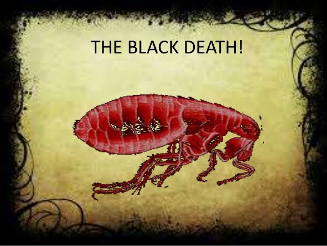 THE BLACK DEATH!