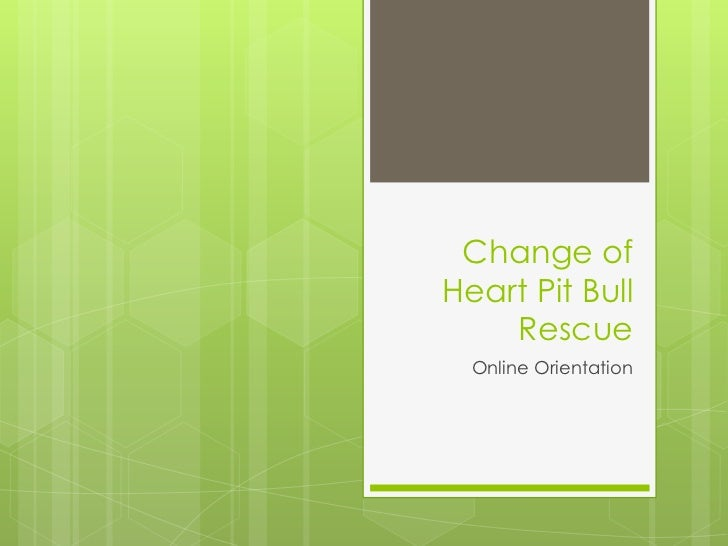 Change of Heart Pit Bull Rescue<br />Online Orientation<br />