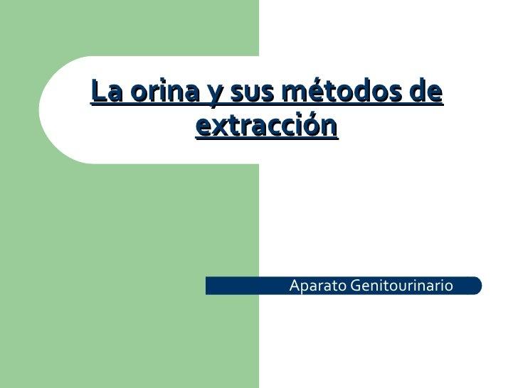 La orina y sus métodos de        extracción              Aparato Genitourinario