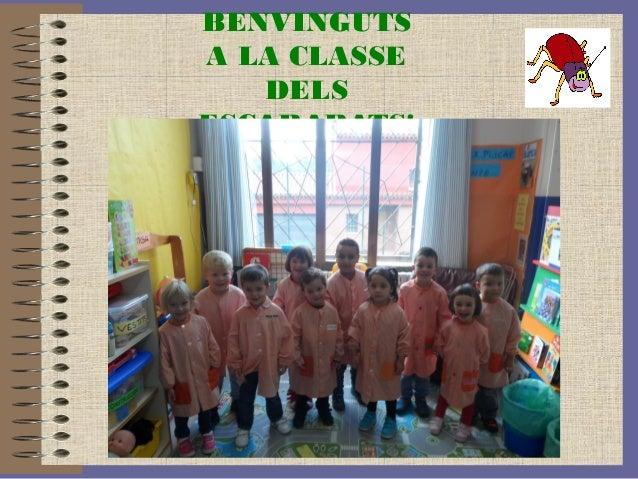BENVINGUTS  A LA CLASSE  DELS  ESCARABATS!