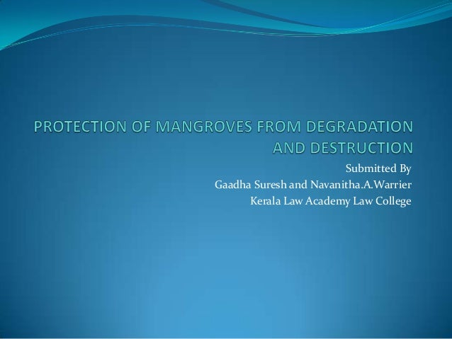 Power point presentation on protection of mangroves from destruction and degradation