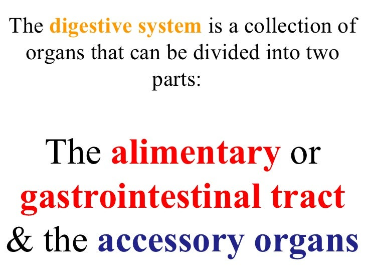The  digestive system  is a collection of organs that can be divided into two parts:  The  alimentary  or  gastrointestina...