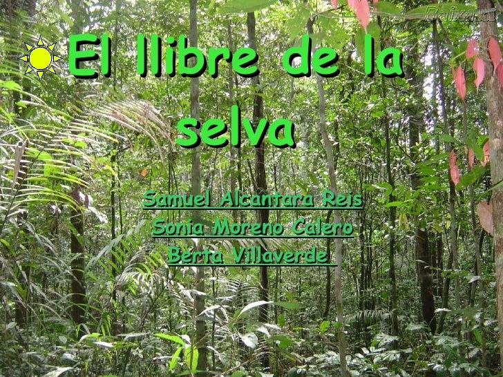 Power Point S Amuel Sonia Y Berta