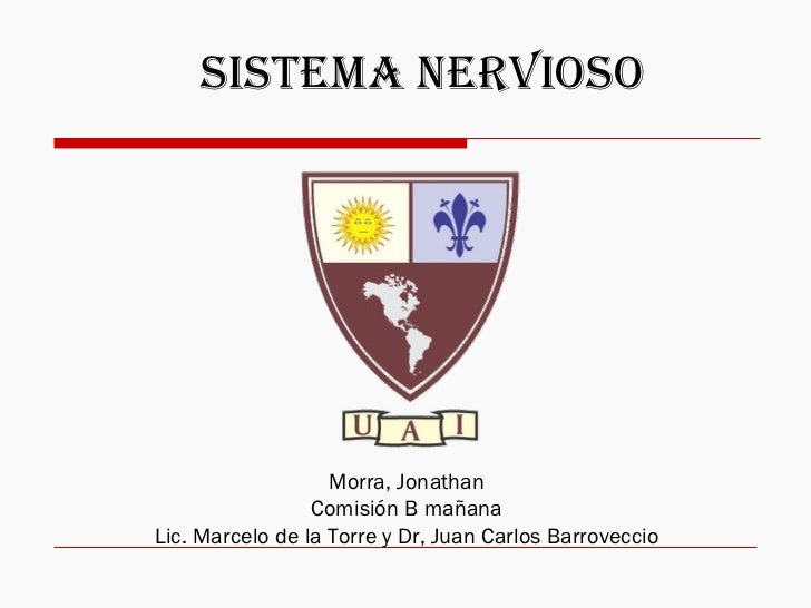 Morra, Jonathan Comisión B mañana Lic. Marcelo de la Torre y Dr, Juan Carlos Barroveccio Sistema Nervioso