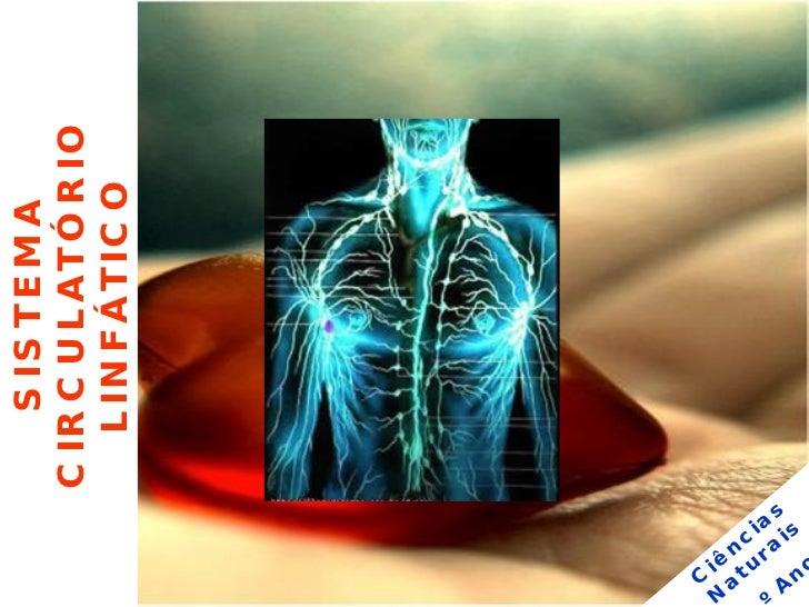 Powerpoint Sistema Circulatório Linfático